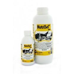 NUTRISEL 1000 ml
