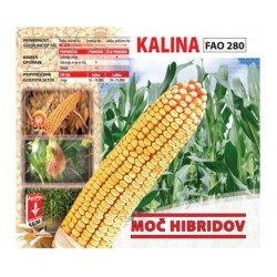 AGRIMAX KALINA fao 270 25mk