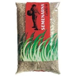 Mnogocvetna ljulka melquatro (5kg,10kg)