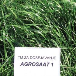 agrosaat-1  - 10kg
